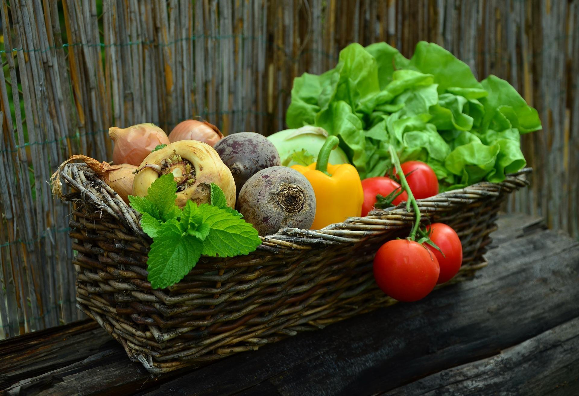 Frischer Kräuter & Gemüse Korb - Heimat und Herz Einrichtung für psychisch erkrankte Menschen